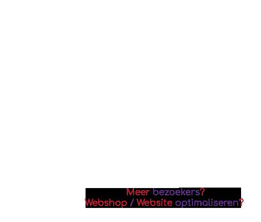 Meer bezoekers? Webshop / Website optimaliseren